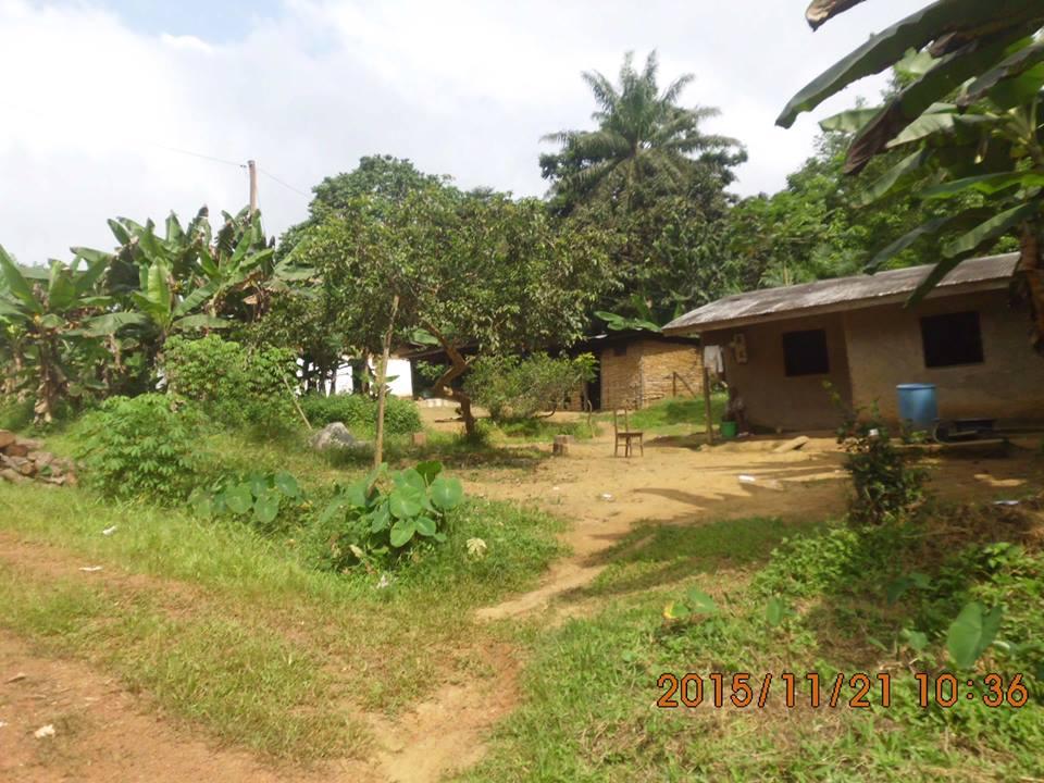 maisons à ngog-bassong