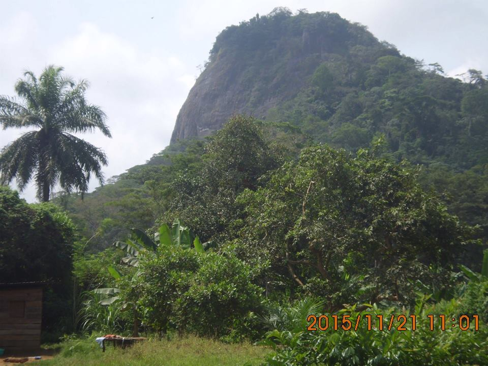 Mont ngog bassong 1